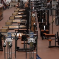 featured image Longhorns in the Weightroom